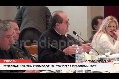 ΑrcadiaPortal.gr Επιτροπή Διαβούλευσης της Περιφέρειας Πελοποννήσου